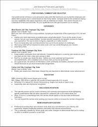 Breakupus Mesmerizing Business Resume Template Free Best Business