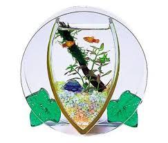 احواض السمك ... ارجوا ان تنال اعجابكم ... images?q=tbn:ANd9GcS