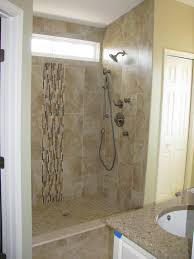Tile Design For Bathroom Captivating Shower Tile Ideas Small Bathrooms With Extraordinary