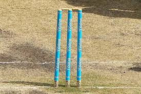 Image result for wicket