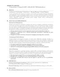 Example Of A Functional Resume  funtional resume  functional     happytom co