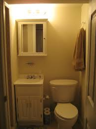 Basement Bathroom Design Ideas   Basement Bathroom - Basement bathroom design ideas