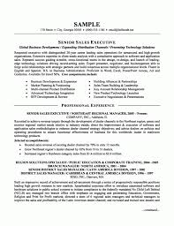 Resume Sample Director by Executive Resume Samples Haadyaooverbayresort Com