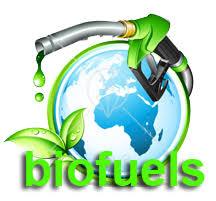 BIOF.-BIOFUEL ENERGY CORP…¡Explotó, pero ¿quién se atreve a subir?…(Actu..30/09/2012)