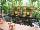 เสริมฮวงจุ้ยบ้านด้วยบ่อปลาคาร์ฟ | HomeIdea.