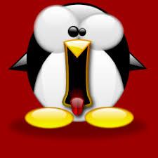 Vulnerabilidades en el Kernel de Linux Ubuntu