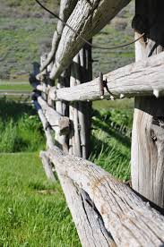 15 best fences images on pinterest garden fences beach and