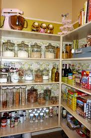 Cheap Kitchen Organization Ideas Pantry Cabinet Kitchen Pantry Cabinet Design Ideas With Kitchen