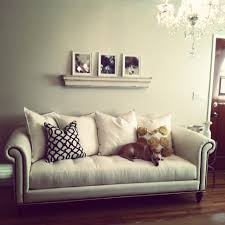 Traditional Living Room Furniture by Bedroom Interesting Tufted Sofa With Zgallerie Furniture And