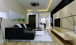 Decorate Your Home For Cheap by Beautiful Living Room Decoration Contemporary Home Design Ideas