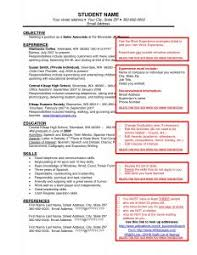 Sample Of Work Resume by Examples Of Resumes 81 Amusing Professional Resume Format For