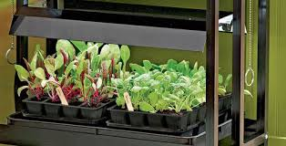 gardening under grow lights gardener u0027s supply