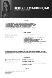 Travel Consultant Resume Sample   retail resumes