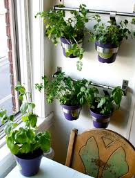 Vertical Garden Vegetables by Indoor Wall Garden Best 25 Kitchen Herb Gardens Ideas On