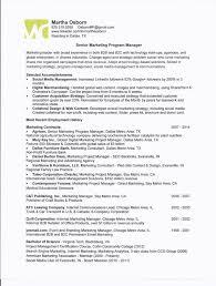 Online Marketing Manager Resume by Program Director Resume Program Director Resume Sample Resume