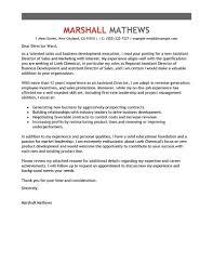 leadership examples for resume admin team leader cover letter district team leader cover letter