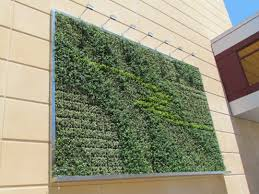 captivating outdoor wall home facade with attached house plants in