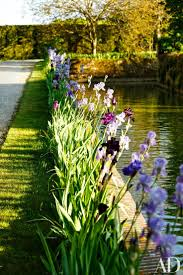 best 20 home garden design ideas on pinterest garden design