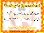 urdu funny questions to ask