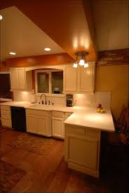 Home Depot Kitchen Cabinet Reviews by Kitchen Cardell Cabinets Catalog Cardell Vanity Home Depot