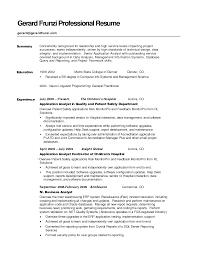 reporting analyst sample resume sample profile summary for resume resume summary samples free examples of resume summary statement sample resume summary