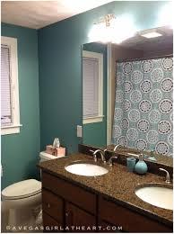 bathroom colored bathroom tissue excellent master bathroom paint