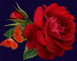 لو كانت لديك وردة جميلة جدا لمن تهد يها - صفحة 2 Images?q=tbn:ANd9GcShzjL1JoLY65qj4CDanWzIYQHVvDQ_JwUmF8M89bWOsBGlFnh6&t=1