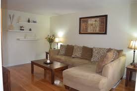 Home Made Decoration by Homemade Decoration Ideas For Living Room 2 Home Design Ideas