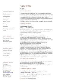 Personal statement for graduate school qualities desired     sasek cf Job Application Personal Statement Samples Personal Statement
