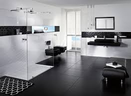 Black And White Bathroom by Modern Bathroom Black And White