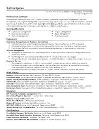 Retail Professional Summary Manager Resume Operations Sample In Splixioo