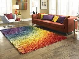 decorating barcelona shag contemporary rainbow living dining room