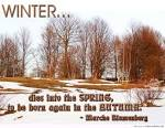 Winter-quotes1.jpg imfunny.net