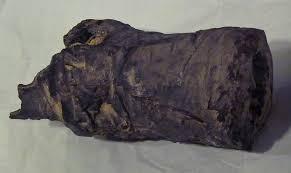 PLOS ONE  Queen Nefertari  the Royal Spouse of Pharaoh Ramses II     PLOS PNG