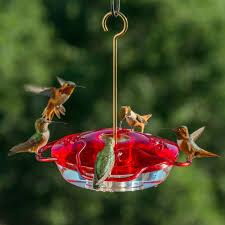 little flyer 4 hummingbird feeder lf 4 droll yankees