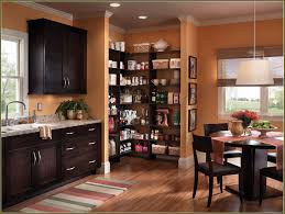 pantry cabinet oak pantry cabinets kitchen with magnificent oak