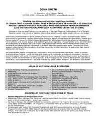 Executive Summary Example Resume  resume with summary  resume with     happytom co
