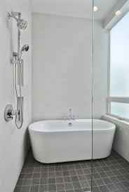 architecture chic small and conemporary bathroom design at the