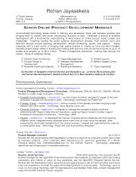 Director Of It Resume Examples by Senior Digital Marketing Manager Resume Digital Marketing Manager