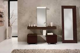 bathroom designs big mirror