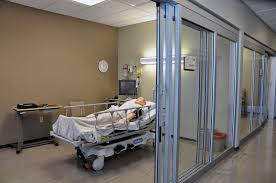 b s nursing adu