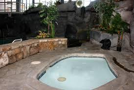 In Door Pool by Gatlinburg Hotel With Indoor Pool And Sauna At Sidney James