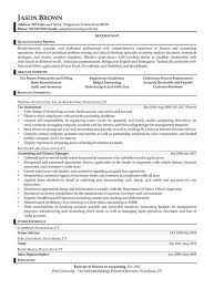 Tax Accountant Sample Resume by Auditing Resume Examples Resume Professional Writers