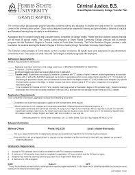 Sample Undergraduate Resume Criminal Justice Resume Samples Home Delivery Driver Sample Resume