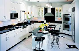 Modern European Kitchen Cabinets Kitchen Style Awesome Modern Black And White Gloss Color Kitchen