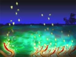 บั้งไฟพญานาค มหัศจรรย์แห่งลุ่มแม่น้ำโขง