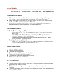 Resume Profile Section Examples by Great Cv Opening Statements