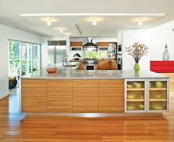 zebra wood cabinets kitchen modern with bamboo flooring ceiling