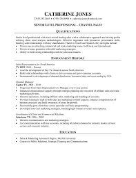 Pharmaceutical Resume  sales resume objective examples     happytom co Sales Professional Resume  Channel Sales    pharmaceutical resume