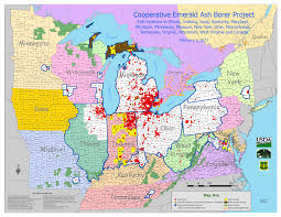 Map Of Wisconsin And Illinois by City Of Elgin Illinois Official Website Emerald Ash Borer